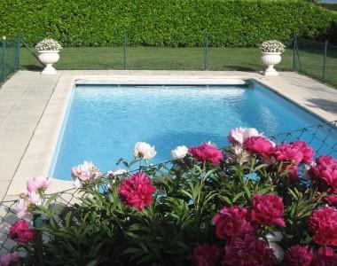 Aménagement, massif et piscine
